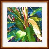 Framed Palm Impressions B 8