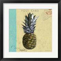 Framed Pineapple 1