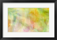 Framed Fields of Wildflowers A