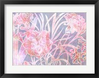 Framed Carnation Creation H