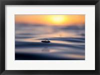 Framed Float Away