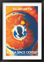 Framed 2001: A Space Odyssey (the ultimate trip)