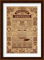 Framed Harry Potter - Quidditch Info