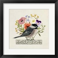 Framed Avian Collage II