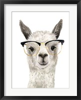 Framed Hip Llama IV
