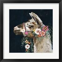 Framed Lovely Llama II
