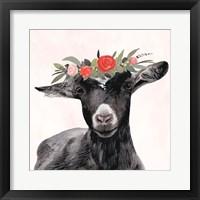 Framed Garden Goat III