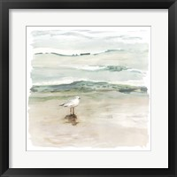 Framed Seagull Cove I