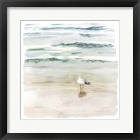Framed Seagull Cove II