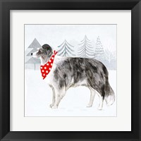 Christmas Cats & Dogs IV Framed Print