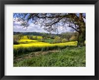 Framed Pastoral Countryside XIV