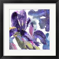Framed Watercolor Flower Composition II