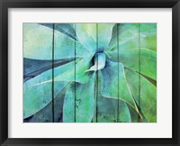 Framed Creative succulent