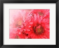 Framed Red Gerbera