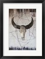Framed Buffalo Skull 2