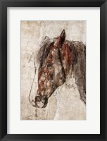 Framed Abstract Horse