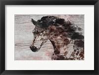 Framed Running Wild Horse 11