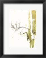 Framed Under Sea Forest VII