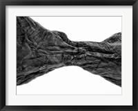 Framed Desert Arches V