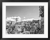 Framed Canyon Lands VI