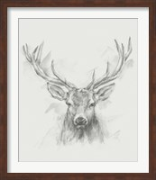 Framed Contemporary Elk Sketch I