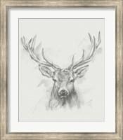 Framed Contemporary Elk Sketch I