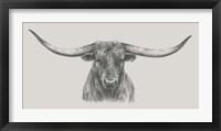 Framed Longhorn Bull