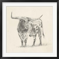 Framed Longhorn Steer Sketch II
