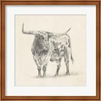 Framed Longhorn Steer Sketch II