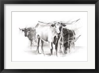 Framed Contemporary Cattle II
