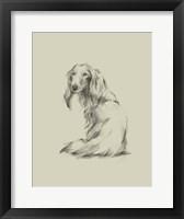 Framed Puppy Dog Eyes II