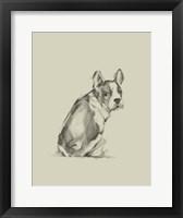 Framed Puppy Dog Eyes IV