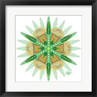 Framed Long Leaf Green Cicada Mandala