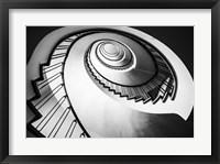 Framed Parrot Staircase  Black/White