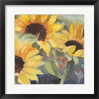 Framed Sunflowers in Watercolor II