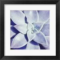 Framed Ultra Violet I