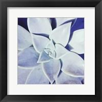 Framed Ultra Violet II