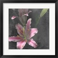 Framed Fleur de Lys I
