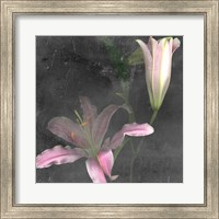 Framed Fleur de Lys II