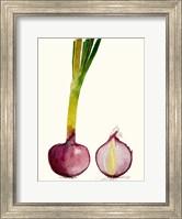 Framed Early Harvest IV