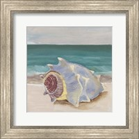 Framed She Sells Seashells I
