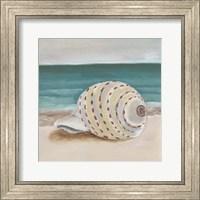 Framed She Sells Seashells II