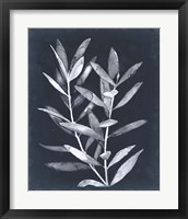 Framed Midnight Leaves II