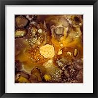Framed Chestnut Illumination I