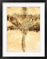Framed Palms on Brown IV