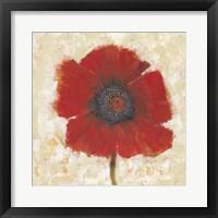 Framed Red Poppy Portrait II