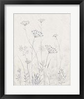 Framed Neutral Queen Anne's Lace I