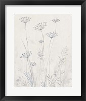 Framed Neutral Queen Anne's Lace II