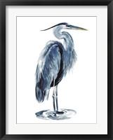 Framed Blue Blue Heron I