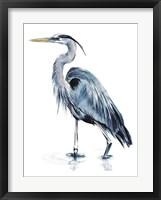 Framed Blue Blue Heron II